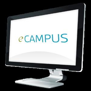 Écran d'ordinateur - Études en ligne