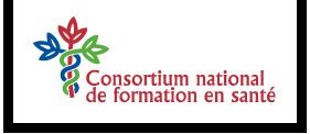 Logo - CNFS