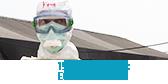 15 mois d'Ébola : Et la fin?