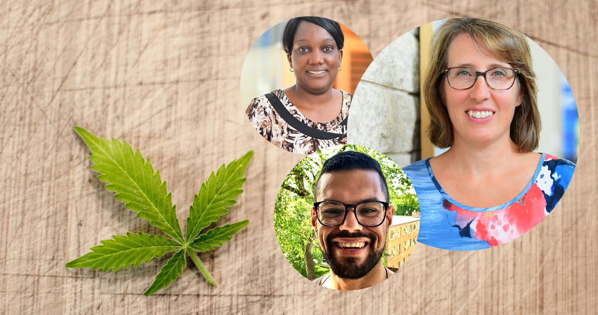 Légalisation du cannabis : les jeunes en consomment-ils plus?
